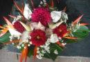 Burkina Faso: Le business florissant des fleurs