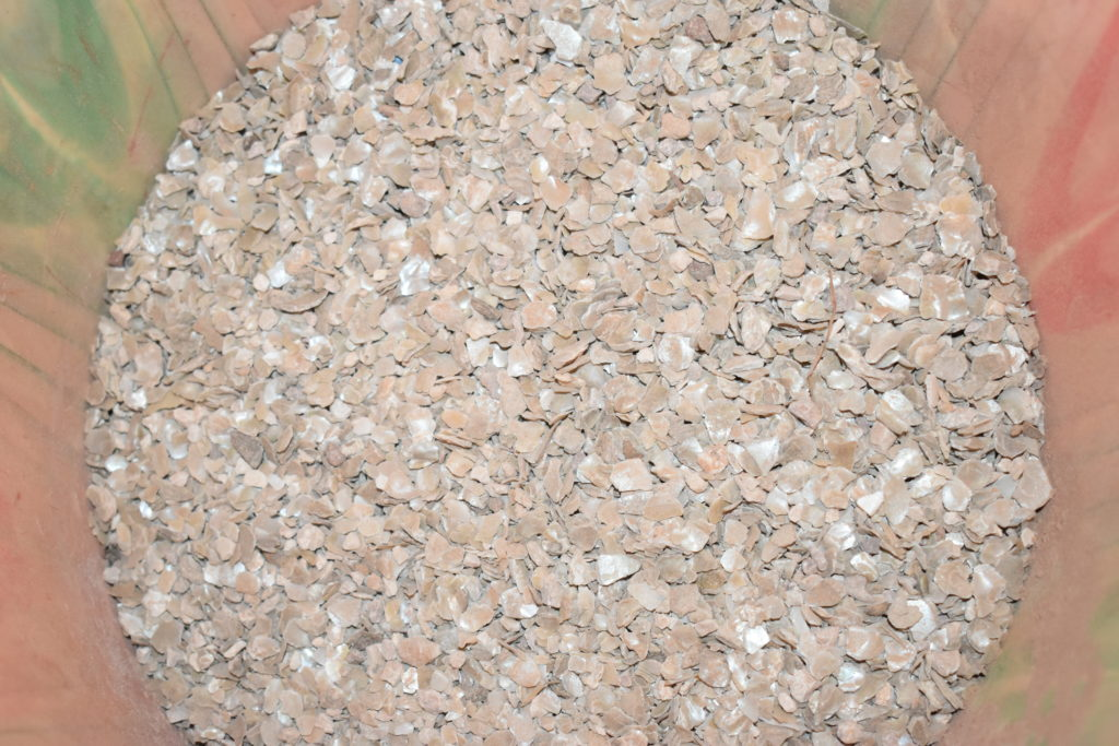 Modèle de pierre à lécher